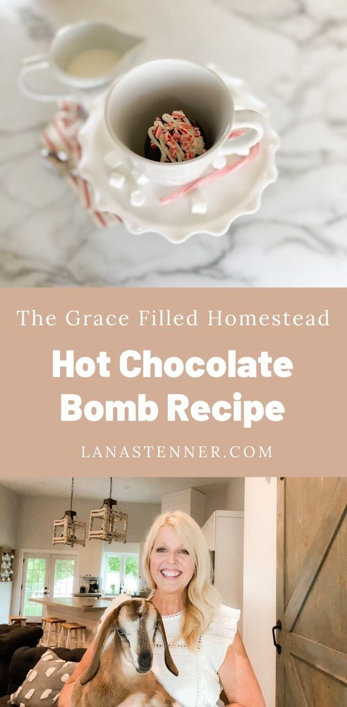 Hot Chocolate Bomb Pinterest