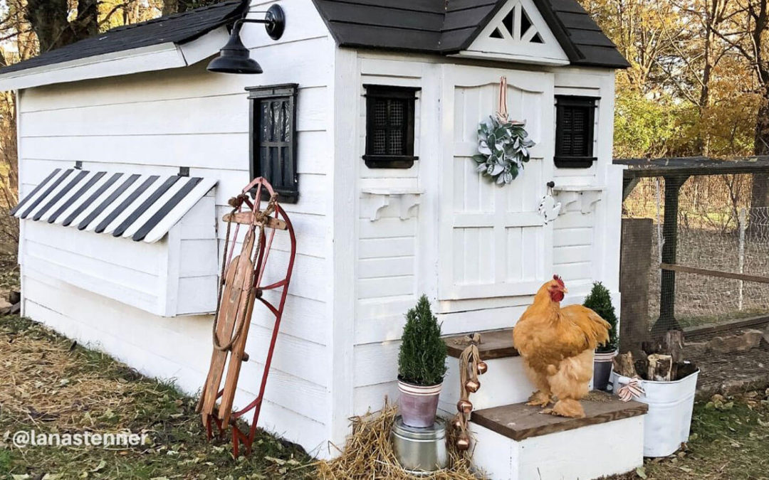 Winterize the Chicken Coop & Goat Pen