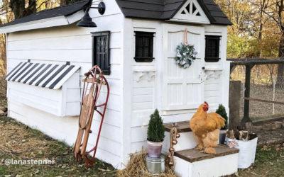 Winterize the Chicken Coop & Goat Pen