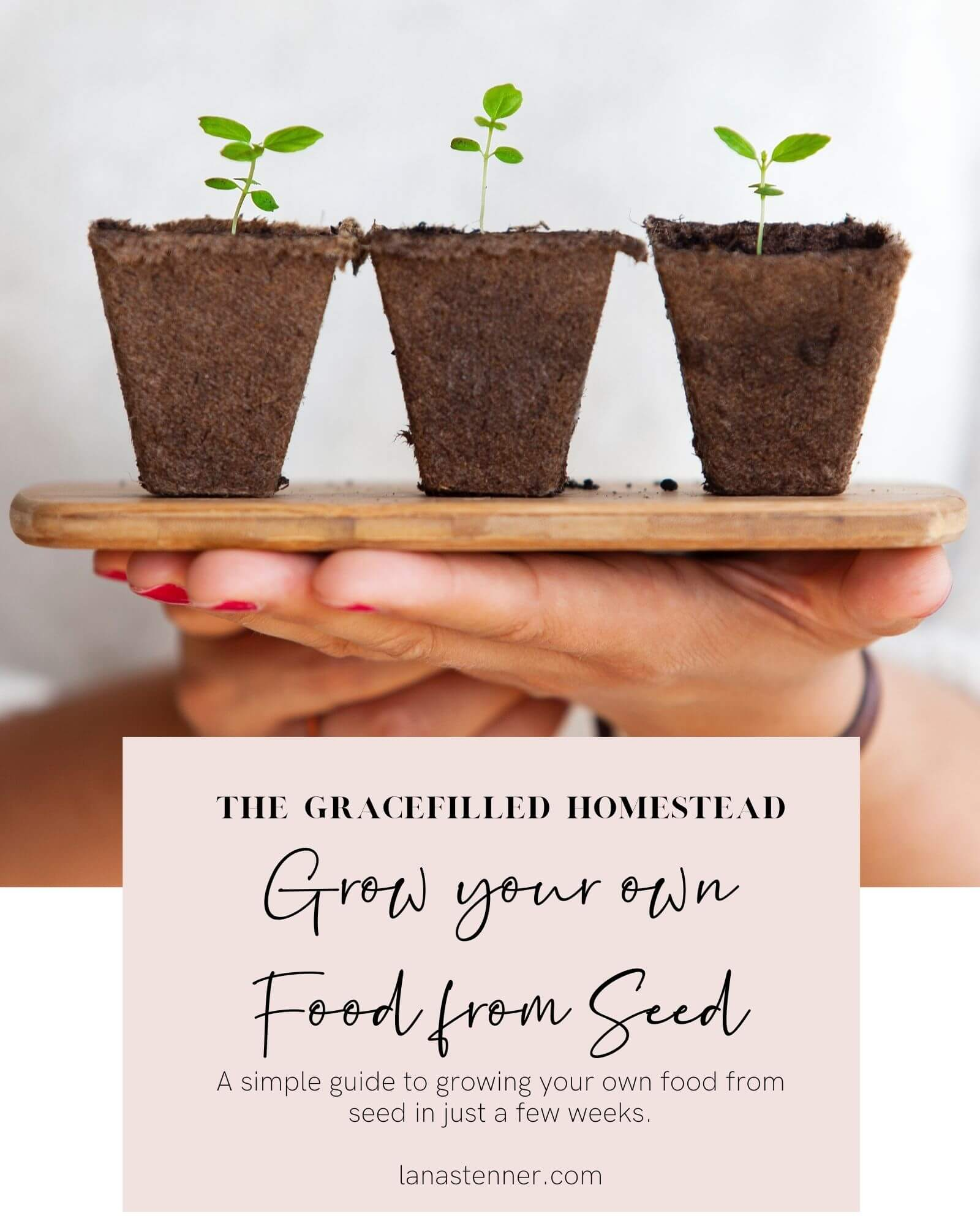 Grow Your Food from seed